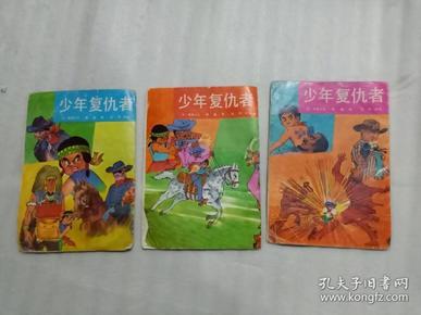 儿童漫画《少年复仇者》上中下