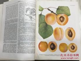 农业百科全书 卷一卷五 有购书发票