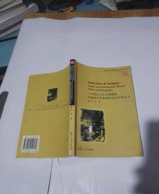 矛盾情结与艺术模糊性:超越政治和族裔的美国华裔文学(英文版)