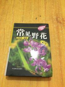 常见野花-第二版