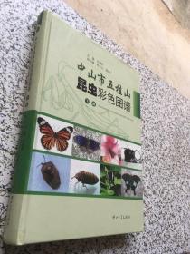 中山市五桂山昆虫彩色图谱