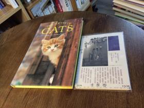 英文原版 THE poetry of Cats  猫的诗歌 【存于溪木素年书店】