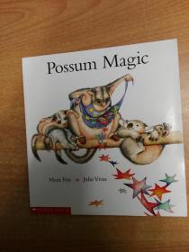 Possum Magic  (12开本  英文儿童绘本)