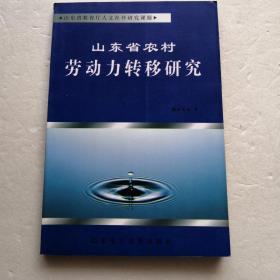 山东省农村劳动力转移研究