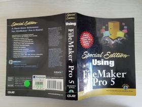 using Filemaker pro 5【实物拍图.有盘】