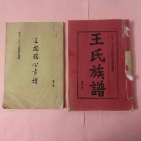 《王忠铭公(王弘诲)年谱》+《王氏族谱(第三卷 上中下)》