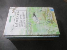 最美的自然图鉴(全四册 鸟类、树木、野草、昆虫)