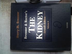 THE KIDNEY Volume  2
