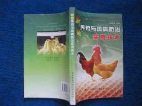 新编养鸡与鸡病防治实用技术