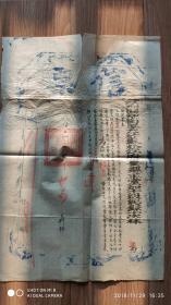文件公文档案-----清代光绪11年(1885年)4月江苏省松江府娄县