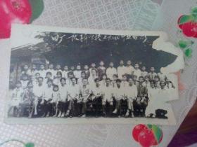 老照片   1979年零陵地区四厂一队子弟学校毕业合影  右边破损