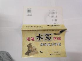 毛笔水写字帖--柳公权玄秘塔
