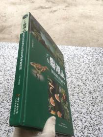 广东鼎湖山国家级自然保护区综合科学考察报告