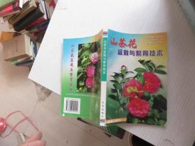 山茶花盆栽与繁育技术