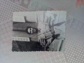 老照片   国民革命军军官照片之一