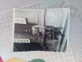 老照片   国民革命军军官照片之二