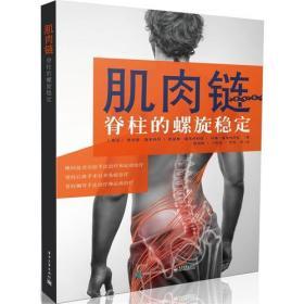 肌肉链:脊柱的螺旋稳定