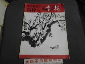 中国画技法精粹----雪梅