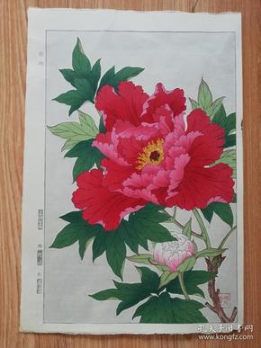 牡丹 河原崎奖堂  芸艸堂(艺草堂)出品