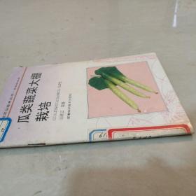 瓜类蔬菜大棚栽培