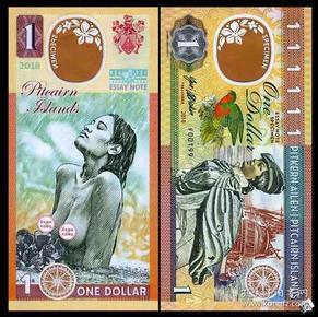 2018年英属皮特凯恩皮特肯群岛1元波西尼亚商业塑料钞