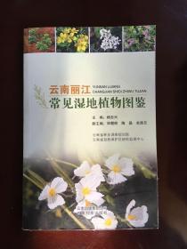 云南丽江常见湿地植物图鉴
