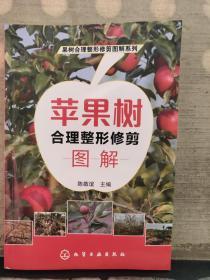 苹果树合理整形修剪图解