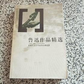 鲁迅作品精选   现代文学名家作品精选