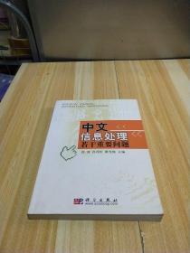 中文信息处理若干重要问题
