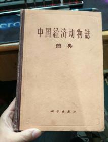 中国经济动物志 兽类(16开精装)