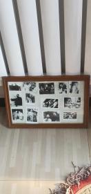 红色收藏,伟人老照片,13张照片,尺寸46-32公分