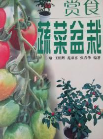 赏食蔬菜盆栽