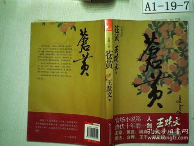 40 2019-04-09上书 加入购物车 收藏 王跃文  著/ 江苏人民出版社