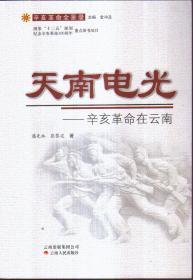 天南电光——辛亥革命在云南