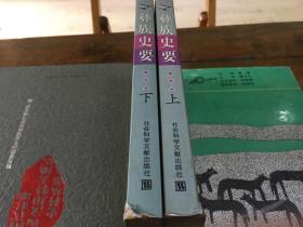 彝族史要(上下全,上册书角略有水浸痕迹)