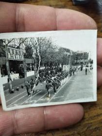 南京大学第三届运动大会开幕式照片