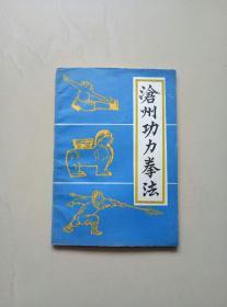沧州功力拳法