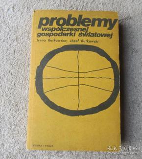 Problemy współczesnej gospodarki światowej 当代世界经济问题(波兰语原版)