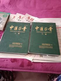 中医正骨上下卷(2010年第二十二卷合订本)