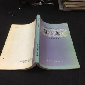 幻象:二十世纪外国大诗人丛书
