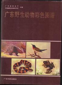 广东野生动物彩色图谱