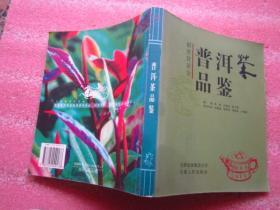 《普洱茶品鉴》解密软黄金   图文并茂(书品以图为准、免争议)
