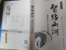 书香巅峰丛书·智点山河:巅峰智业十年经典案例集