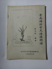 """青岛海滨常见海藻图谱 (对折页打印本 """"标本图谱+说明""""形式)    1914"""