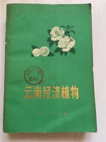云南经济植物 /云南省植物研究所 云南人民出版社