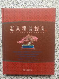 盆景精品鉴赏:2010年广州国际盆景邀请展实录