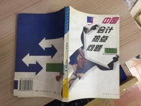 中国会计热点问题(对外经贸热点研究丛书 5)