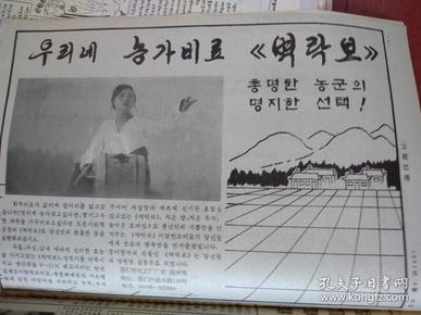 家庭新闻(朝鲜文)1994年8月25日
