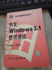 中文Windows 3.1使用速成