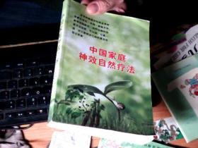 中国家庭神效神效自然疗法        6H